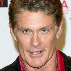 The Bizarre Thing Found in David Hasselhoff's Home