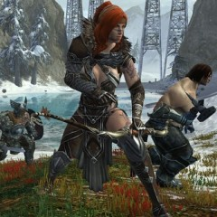Guild Wars 2 Breaks One Million Beta Registrations in 48 hours