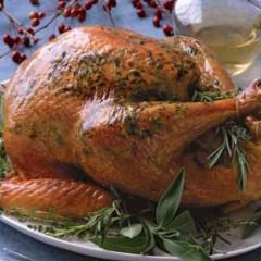 The Best Roast Turkey Recipe on the Internet