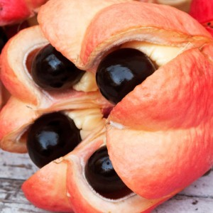 10 Most Dangerous Foods You Can Eat