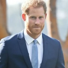 Harry Discusses Meghan