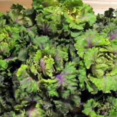 Two New Superfoods To Try If You're Sick Of Kale