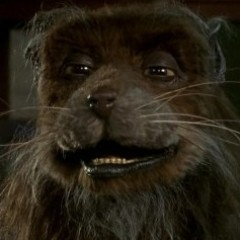 Danny Woodburn Is Now Splinter