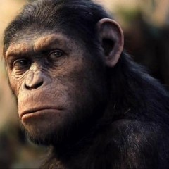 New Details Released About The Next 'Planet of the Apes' Movie