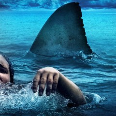Top 5 Movies To Watch For Shark Week