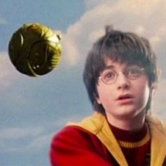 Quidditch: The Movie?