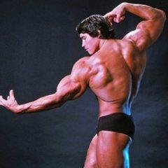 Arnold Schwarzeneggers Son Channels His Dad in Photo