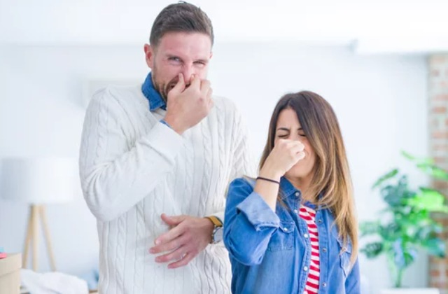 8 Best Ways To Get Rid Of Mildew Smell